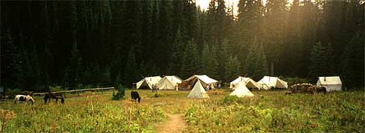 Morning in Camp